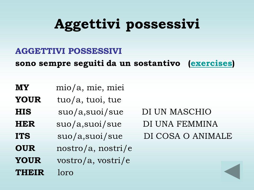 Aggettivi possessivi AGGETTIVI POSSESSIVI