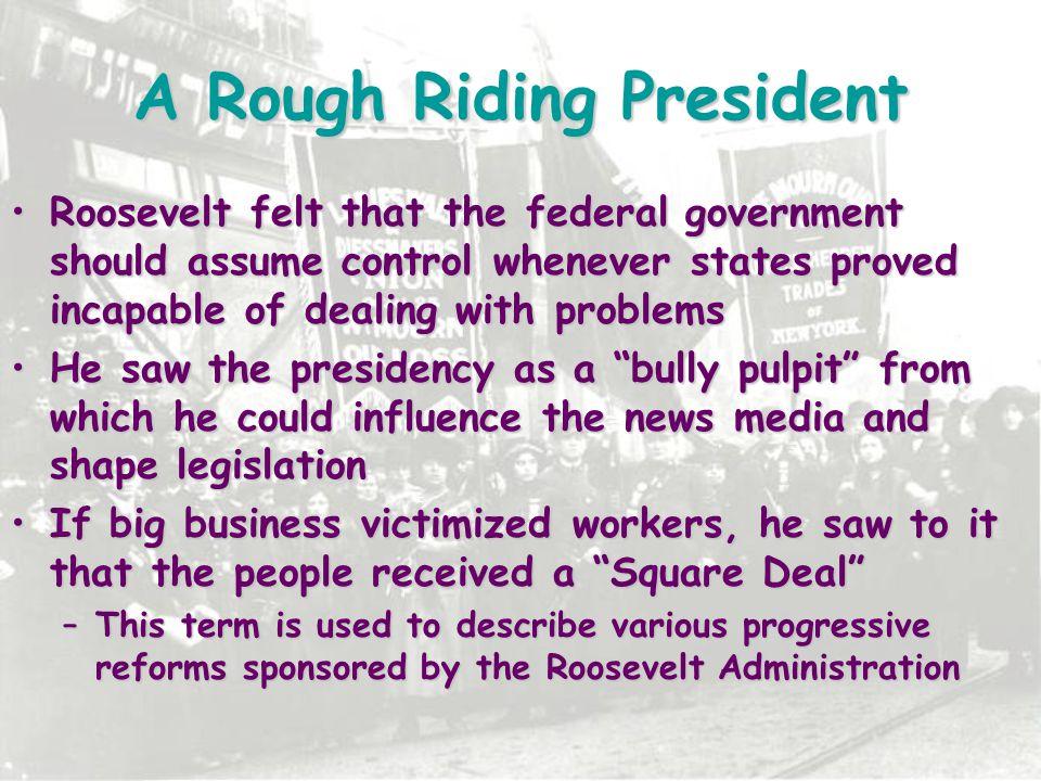 A Rough Riding President