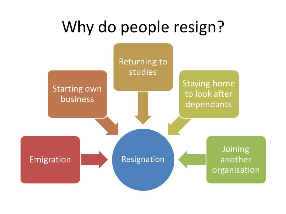 Why do people resign Returning to studies