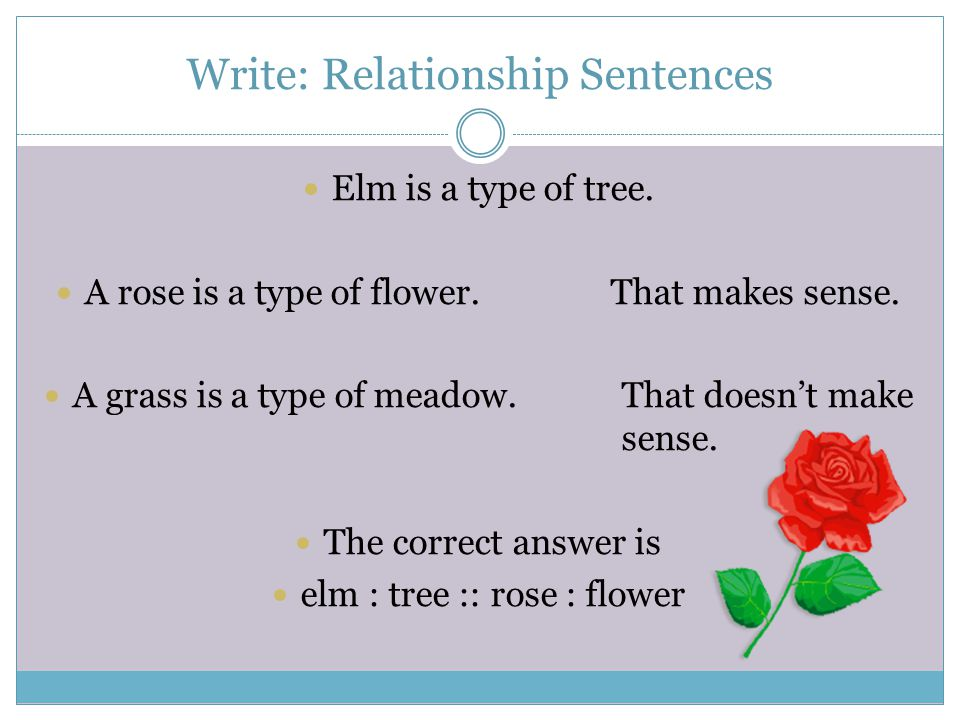 Write: Relationship Sentences
