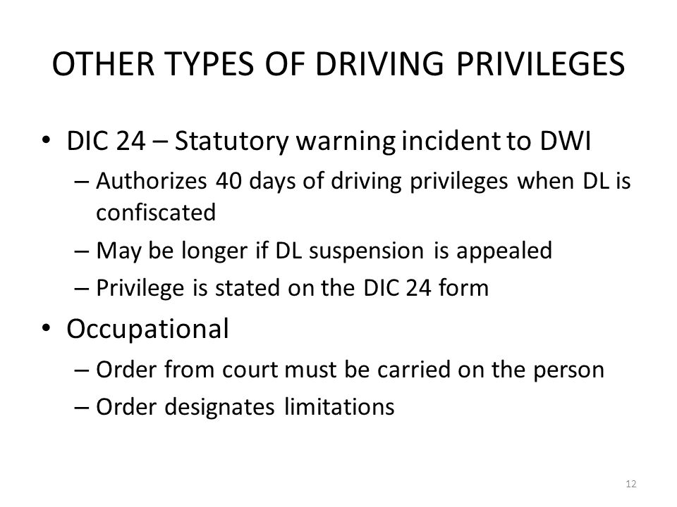 OTHER TYPES OF DRIVING PRIVILEGES