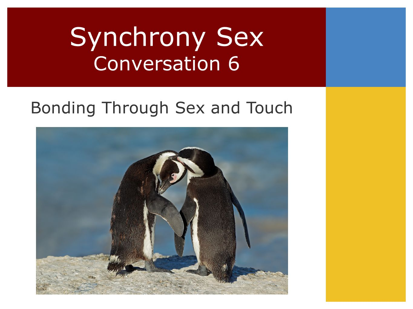 Synchrony Sex Conversation 6