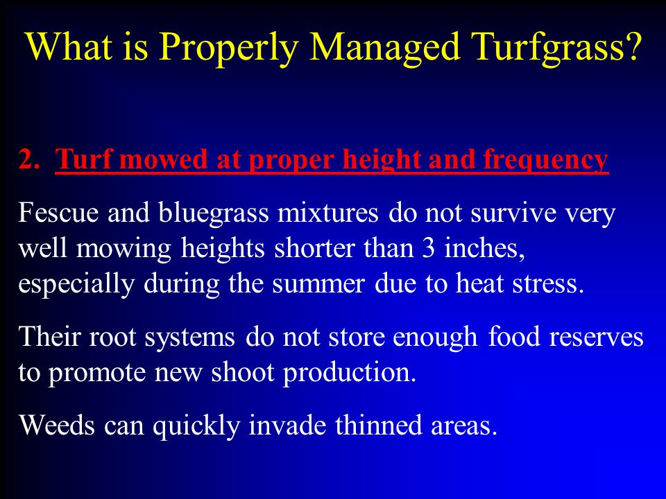 What is Properly Managed Turfgrass