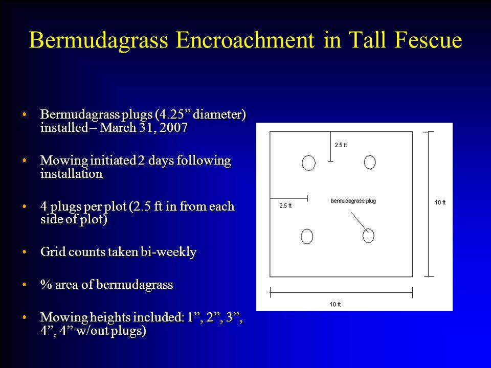 Bermudagrass Encroachment in Tall Fescue