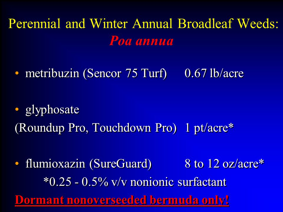 Perennial and Winter Annual Broadleaf Weeds: Poa annua