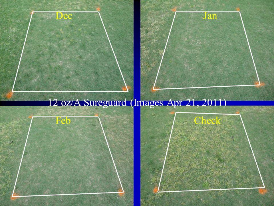 12 oz/A Sureguard (Images Apr 21, 2011)