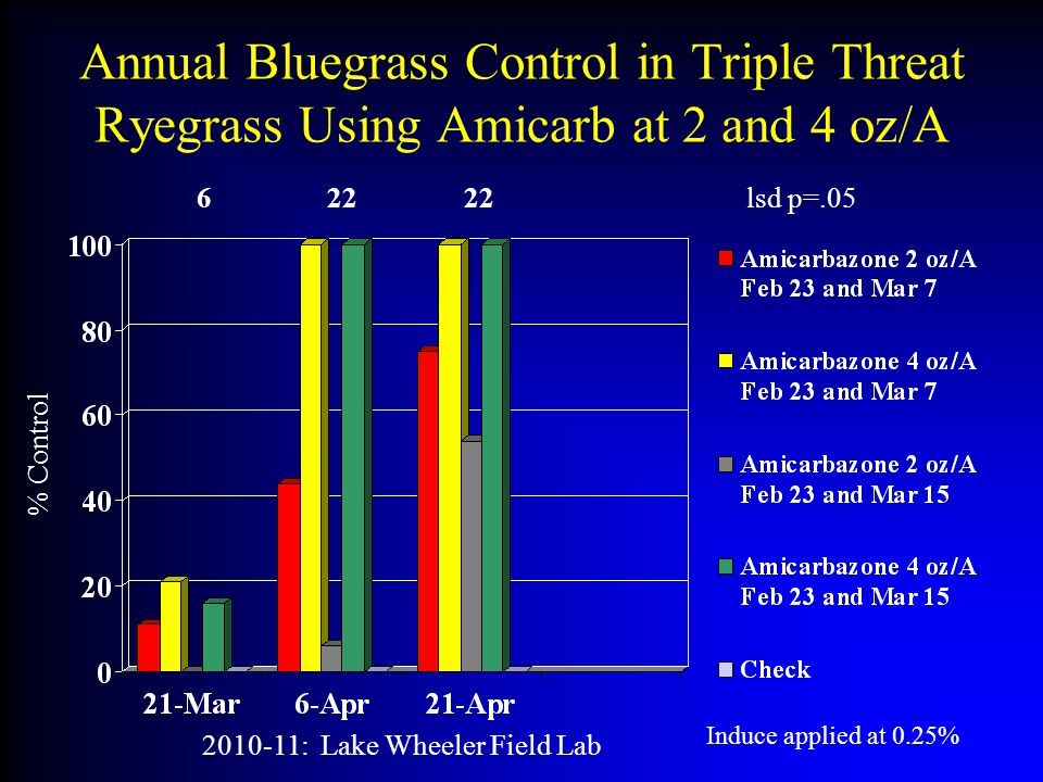 Annual Bluegrass Control in Triple Threat Ryegrass Using Amicarb at 2 and 4 oz/A