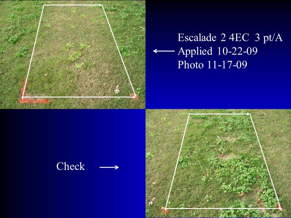 Escalade 2 4EC 3 pt/A Applied 10-22-09 Photo 11-17-09 Check