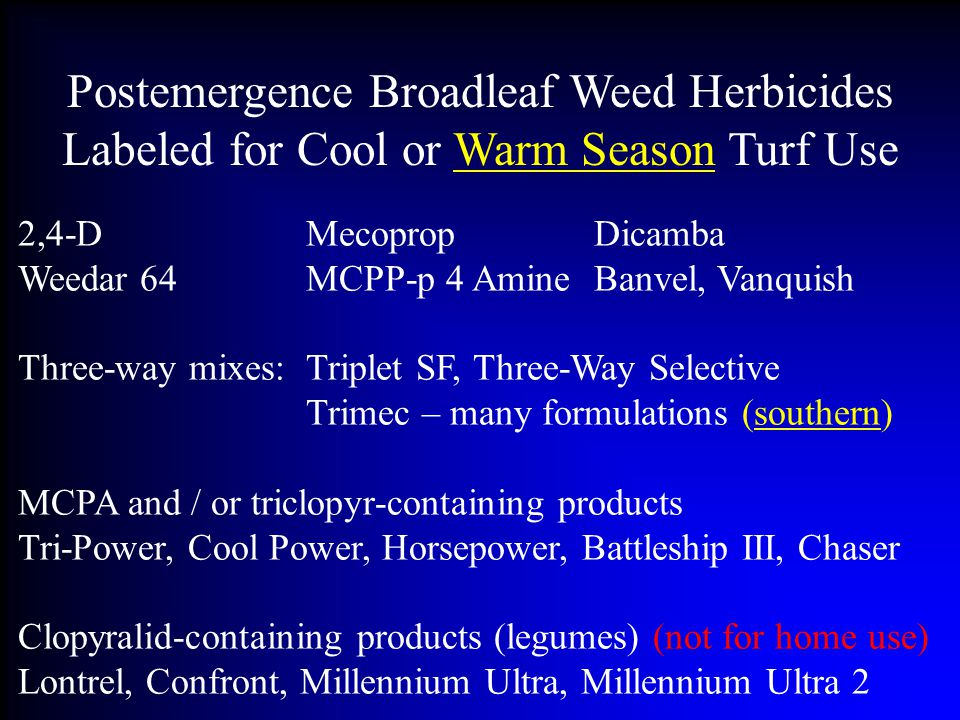 Postemergence Broadleaf Weed Herbicides Labeled for Cool or Warm Season Turf Use