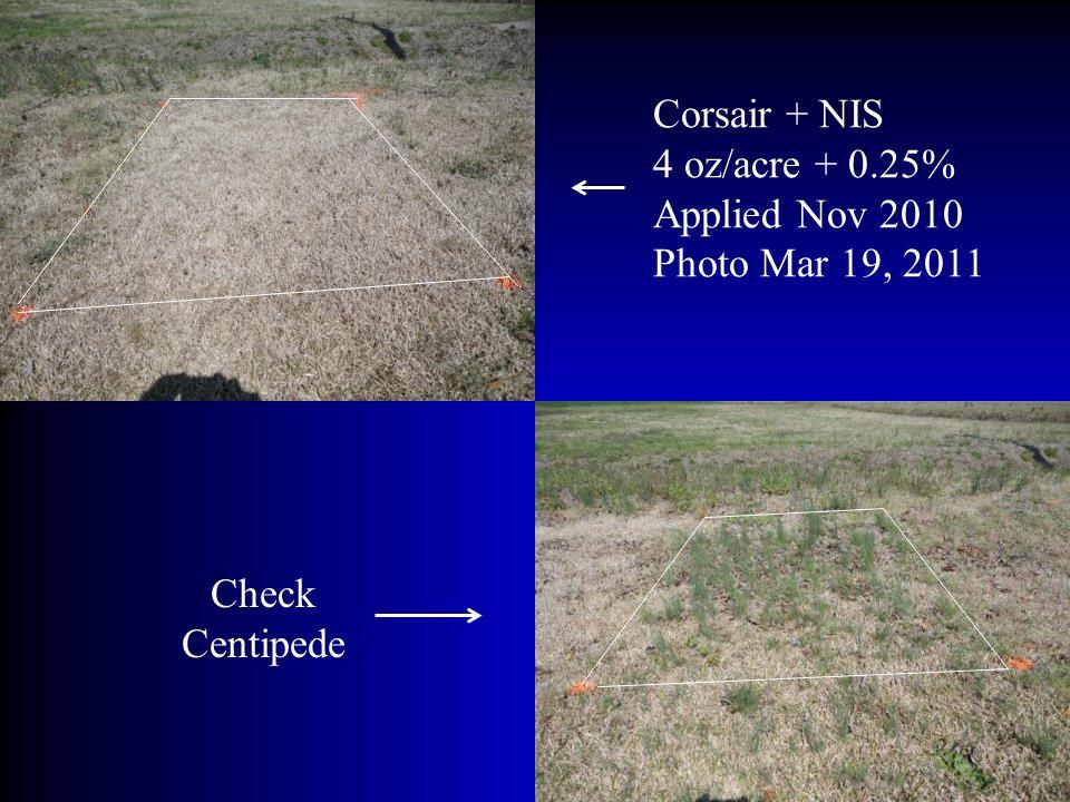 Corsair + NIS 4 oz/acre + 0.25% Applied Nov 2010 Photo Mar 19, 2011 Check Centipede