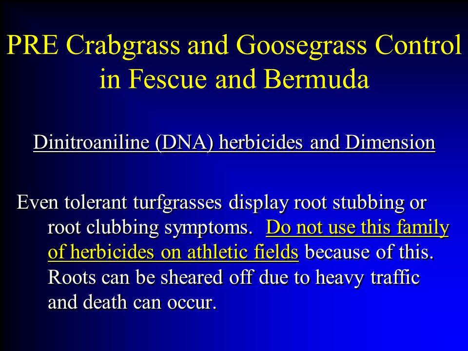 PRE Crabgrass and Goosegrass Control in Fescue and Bermuda