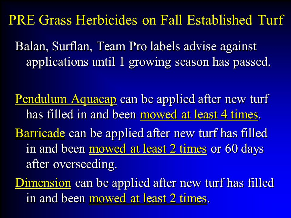 PRE Grass Herbicides on Fall Established Turf