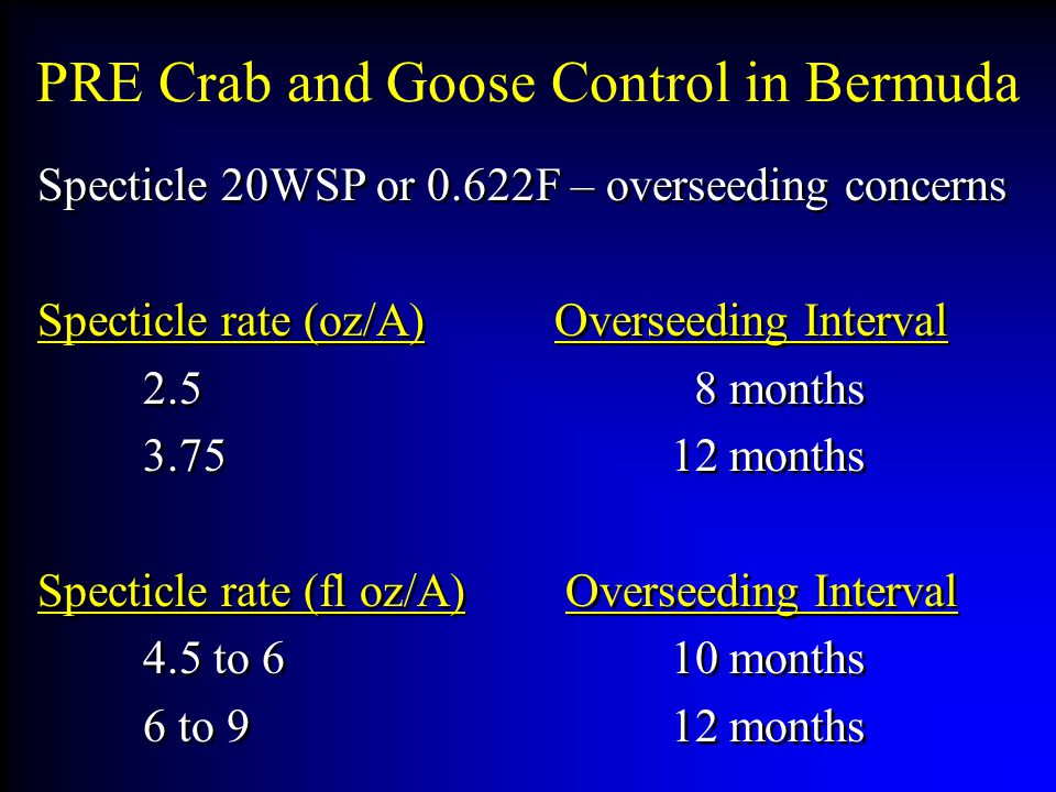 PRE Crab and Goose Control in Bermuda