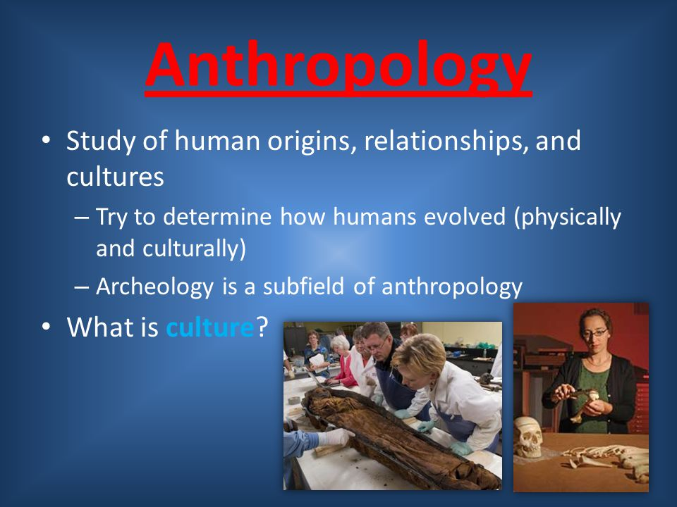 Anthropology Study of human origins, relationships, and cultures