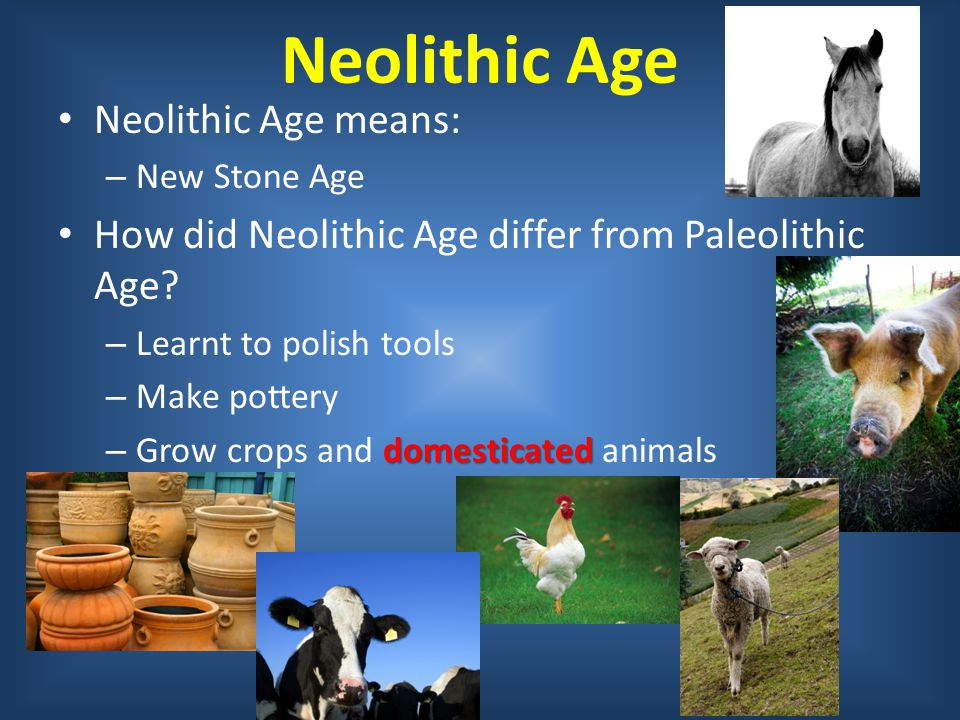 Neolithic Age Neolithic Age means: