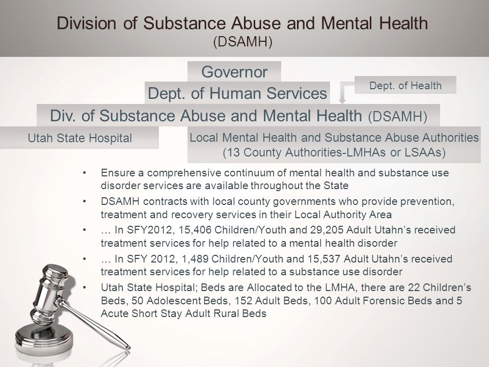 Division of Substance Abuse and Mental Health (DSAMH)