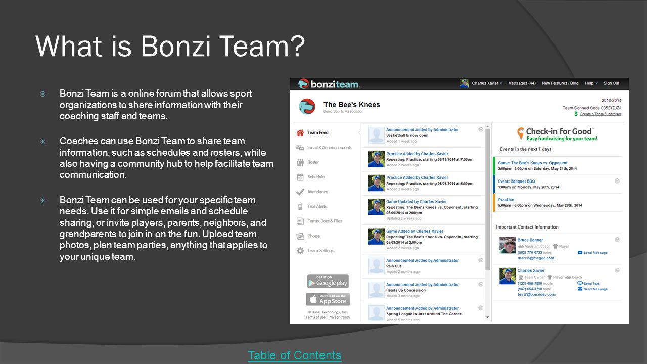 What is Bonzi Team Table of Contents