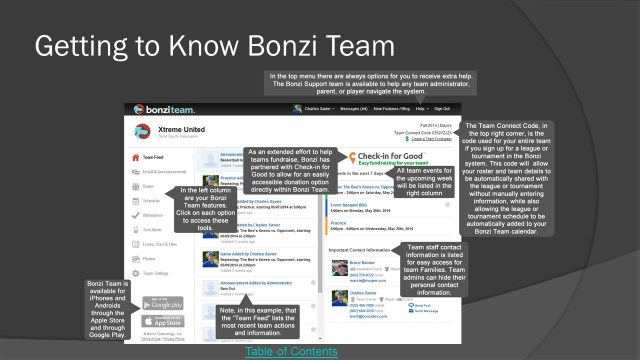 Getting to Know Bonzi Team