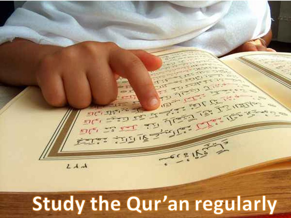 Study the Qur'an regularly