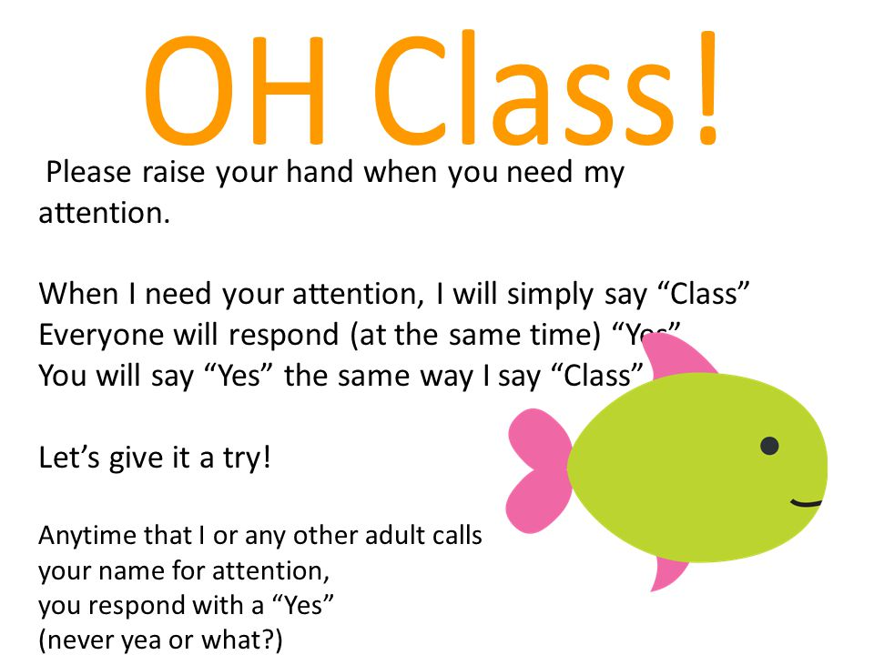 OH Class! Please raise your hand when you need my attention.