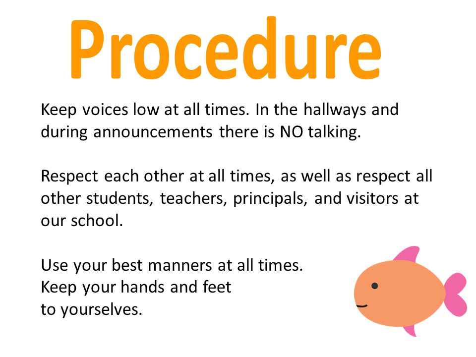 Procedure Keep voices low at all times. In the hallways and during announcements there is NO talking.