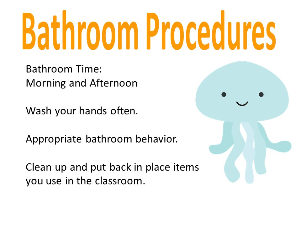 Bathroom Procedures Bathroom Time: Morning and Afternoon