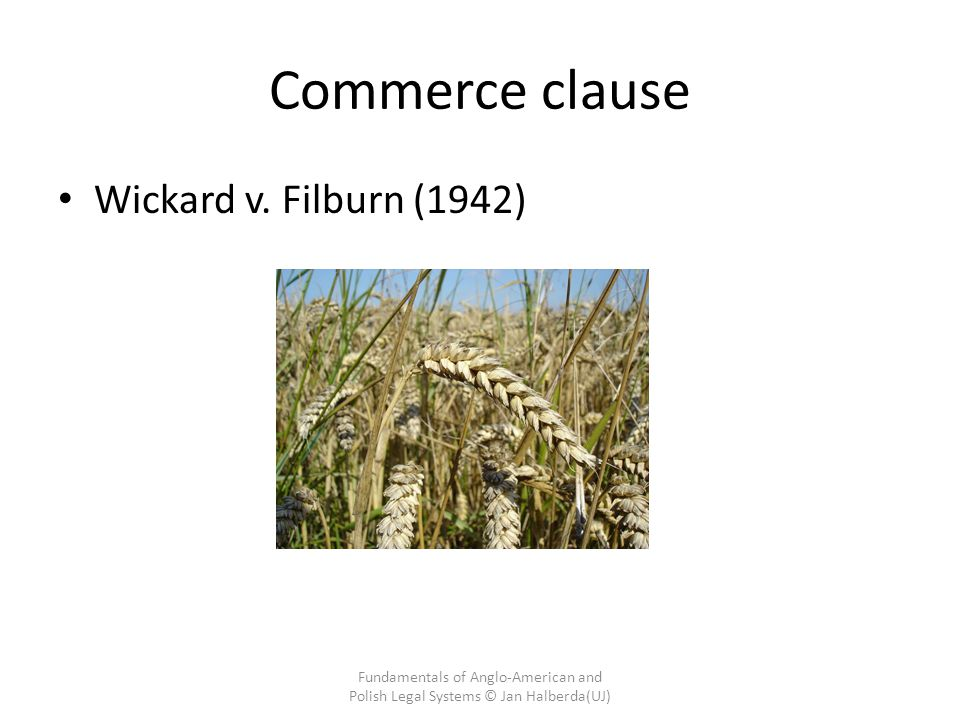 Commerce clause Wickard v. Filburn (1942)