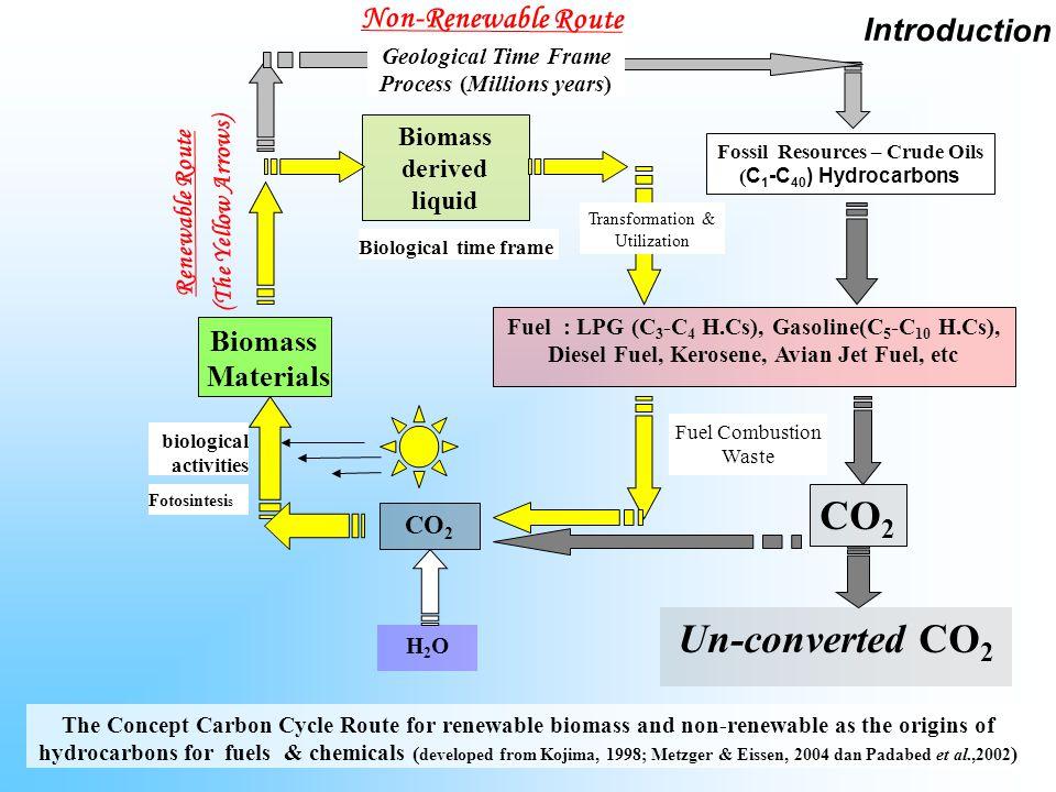 CO2 Un-converted CO2 Non-Renewable Route Introduction Biomass