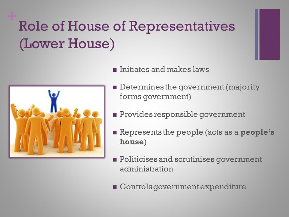 Role of House of Representatives (Lower House)