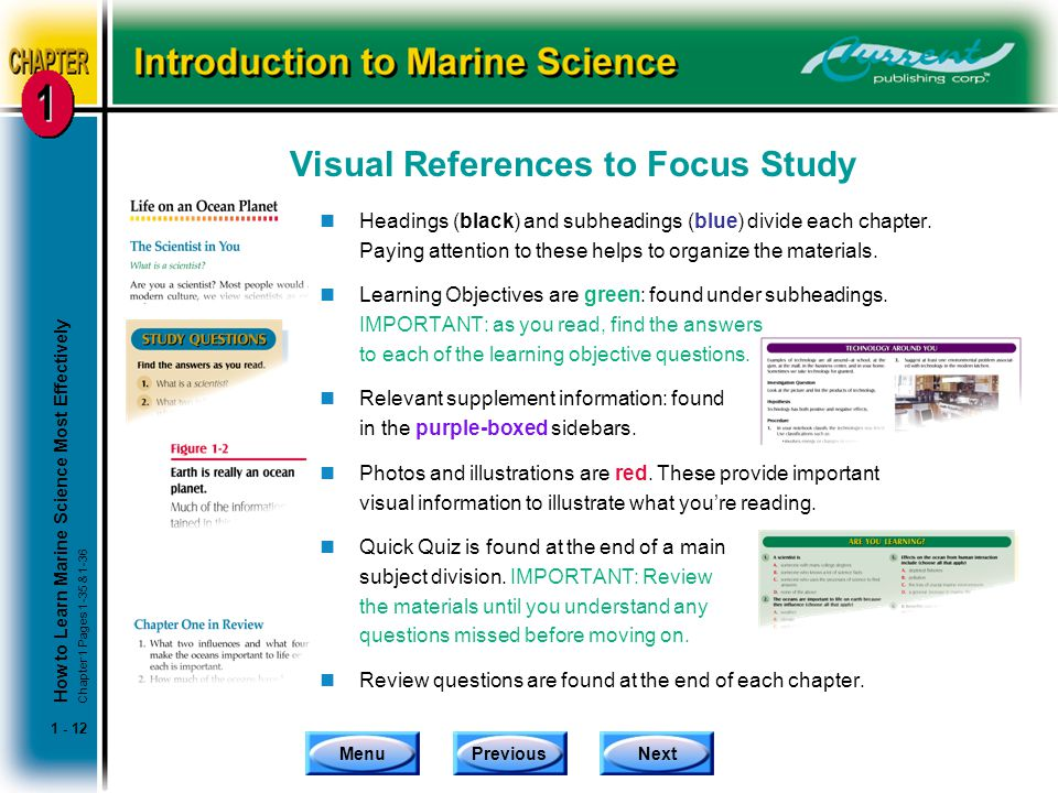 Visual References to Focus Study