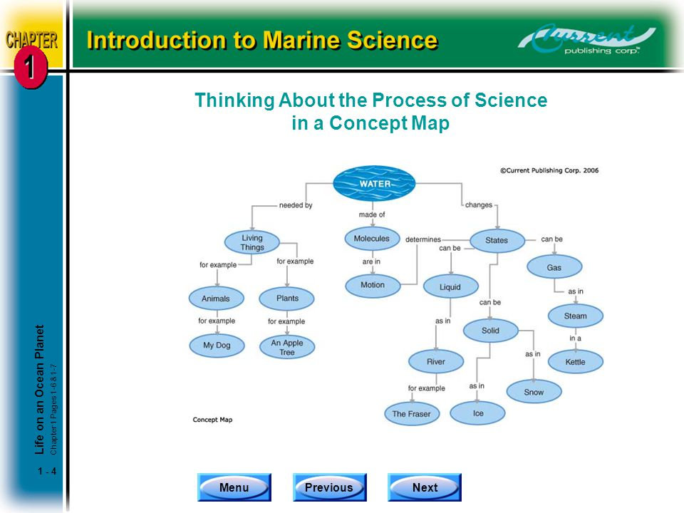 Thinking About the Process of Science in a Concept Map