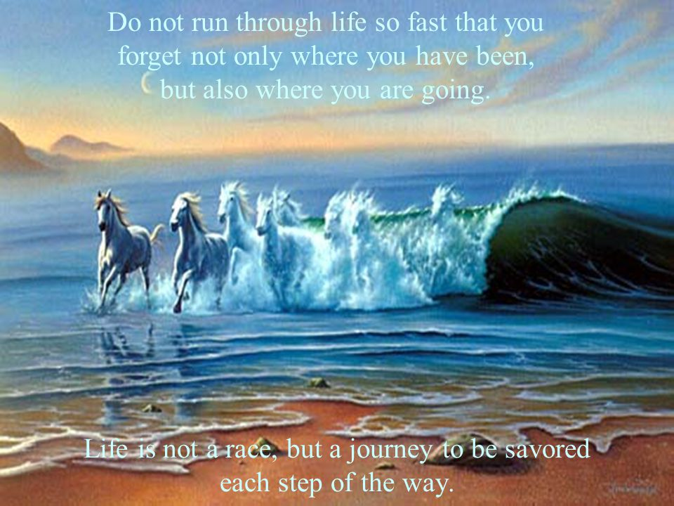 Life is not a race, but a journey to be savored each step of the way.