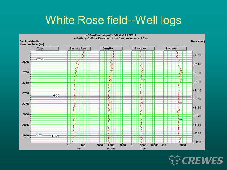 White Rose field--Well logs