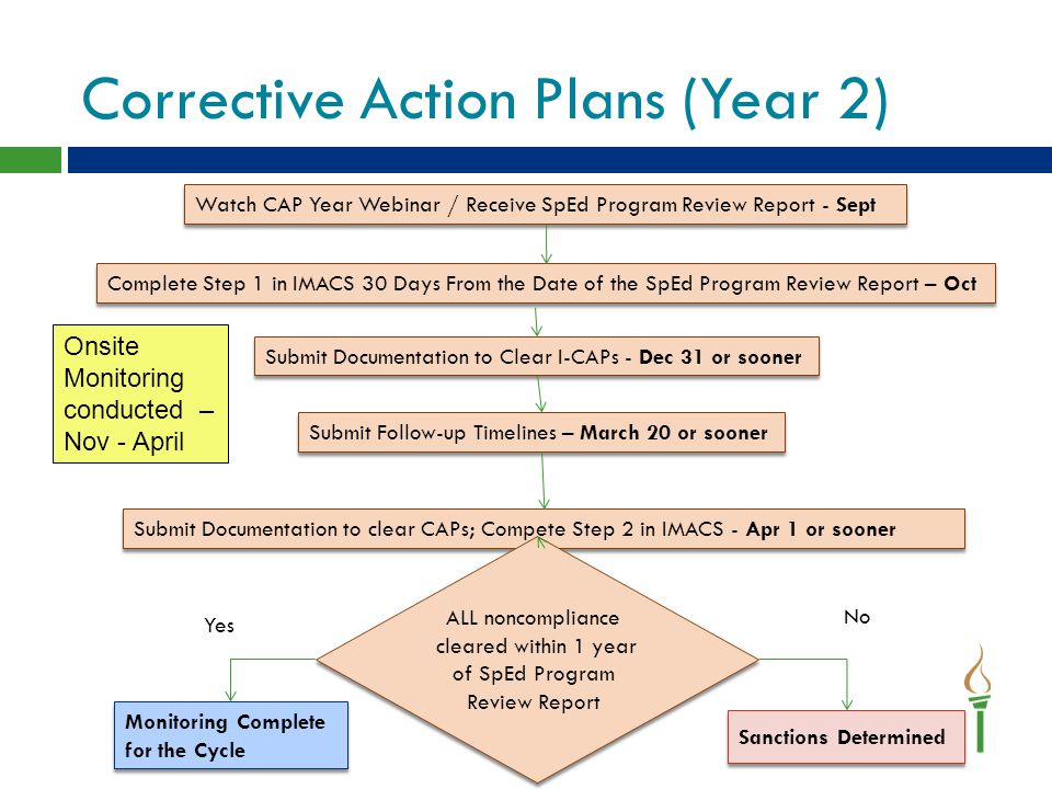 Corrective Action Plans (Year 2)