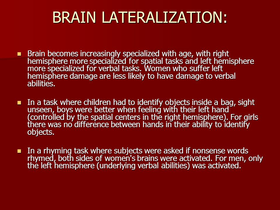 the relationship between handedness and brain lateralization