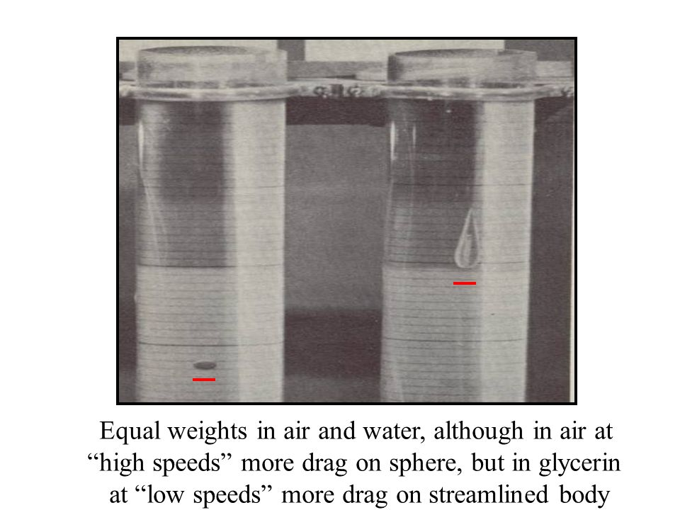 Equal weights in air and water, although in air at