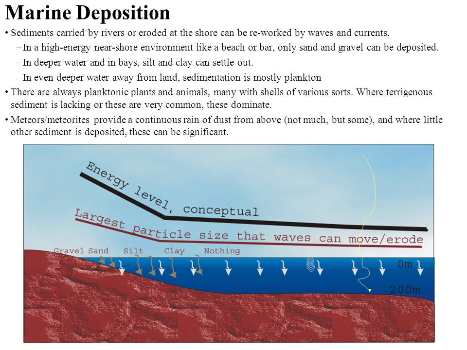 Marine Deposition Sediments carried by rivers or eroded at the shore can be re-worked by waves and currents.