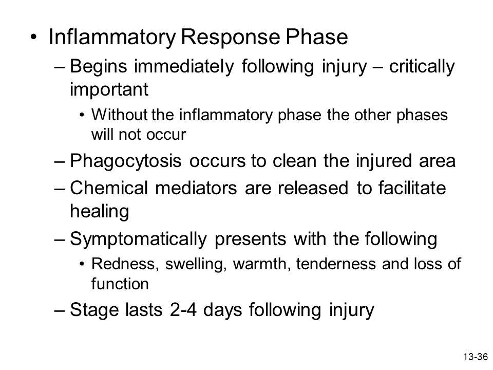 Inflammatory Response Phase