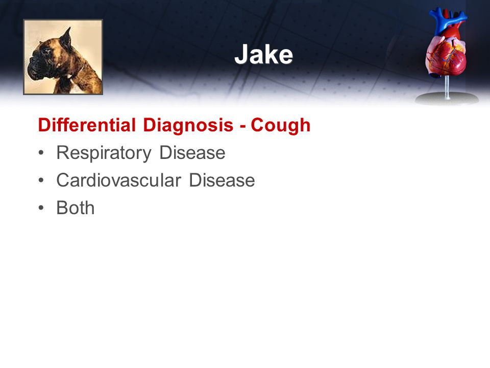 Jake Differential Diagnosis - Cough Respiratory Disease