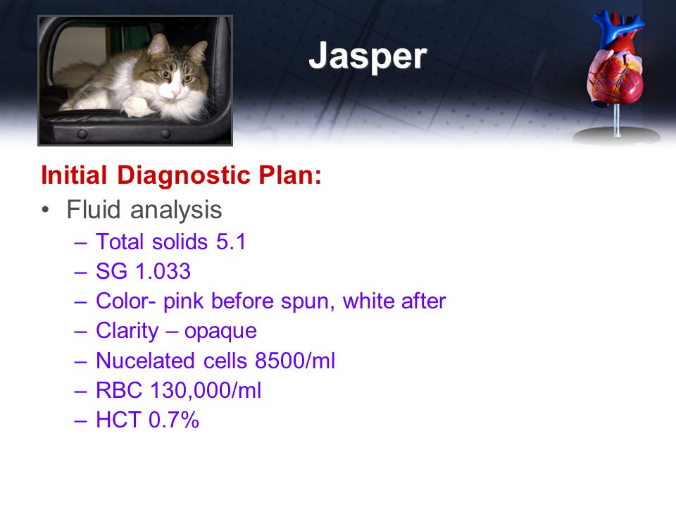 Jasper Initial Diagnostic Plan: Fluid analysis Total solids 5.1