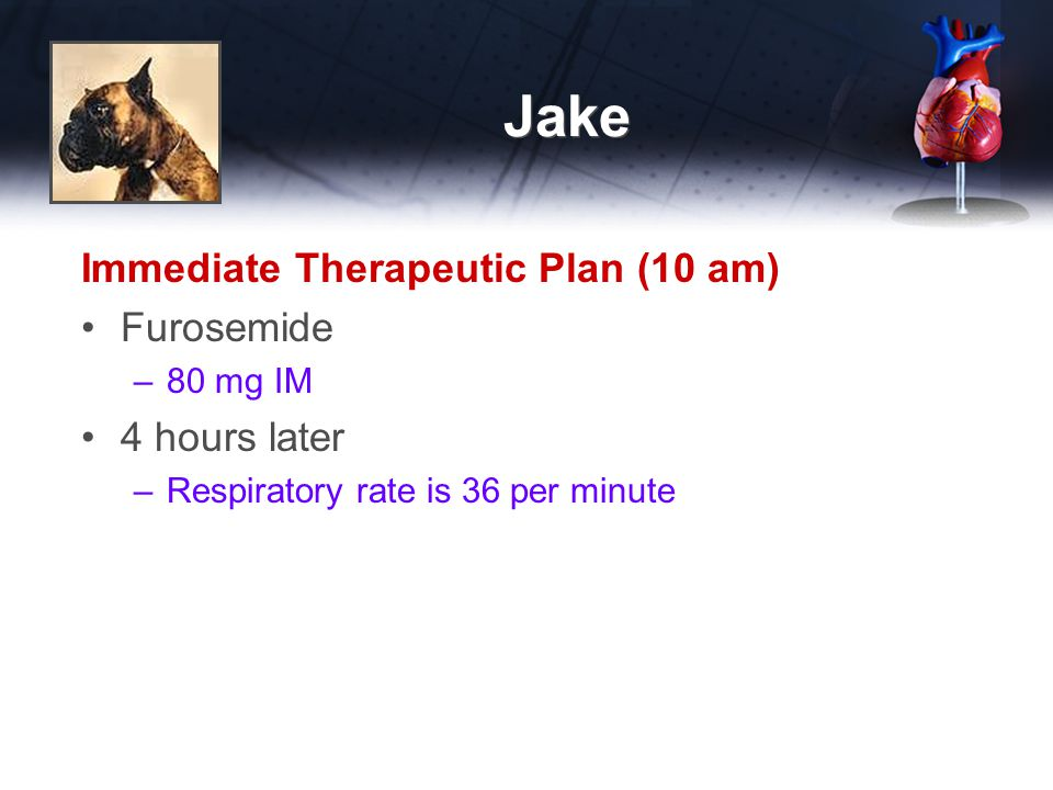 Jake Immediate Therapeutic Plan (10 am) Furosemide 4 hours later