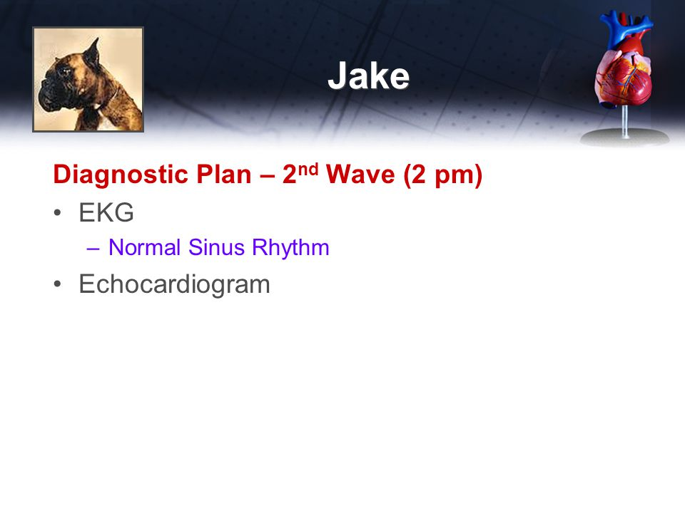 Jake Diagnostic Plan – 2nd Wave (2 pm) EKG Echocardiogram