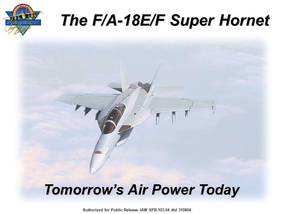 The F/A-18E/F Super Hornet