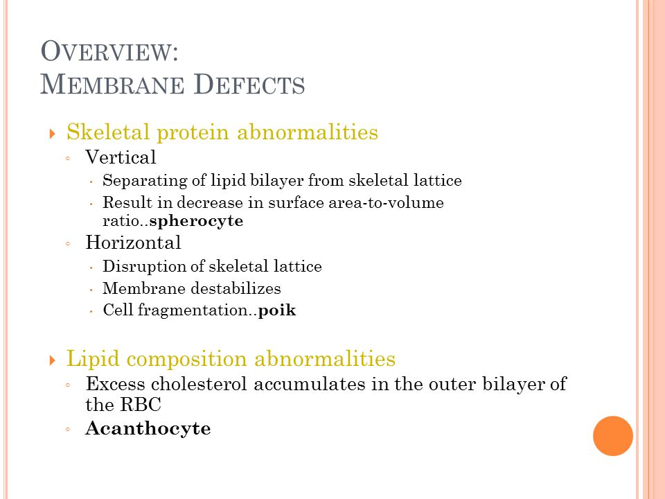 Overview: Membrane Defects