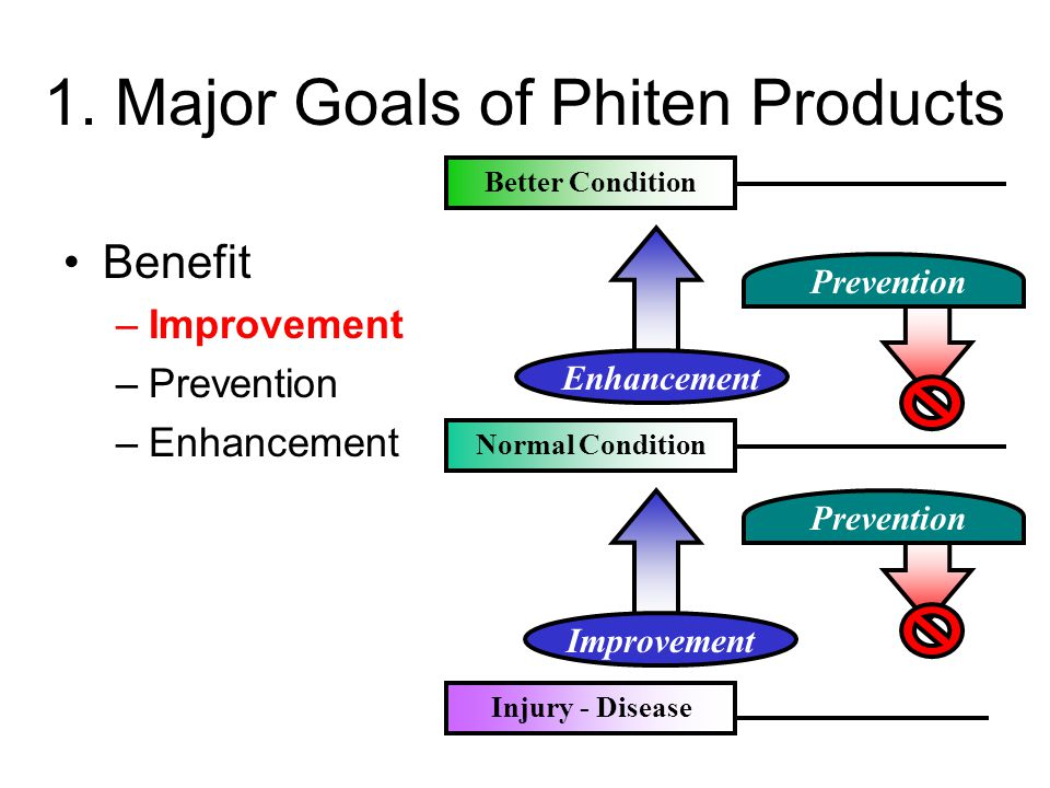1. Major Goals of Phiten Products