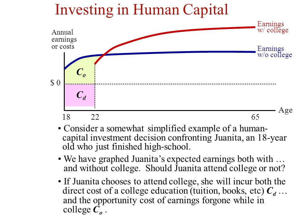 Investing in Human Capital