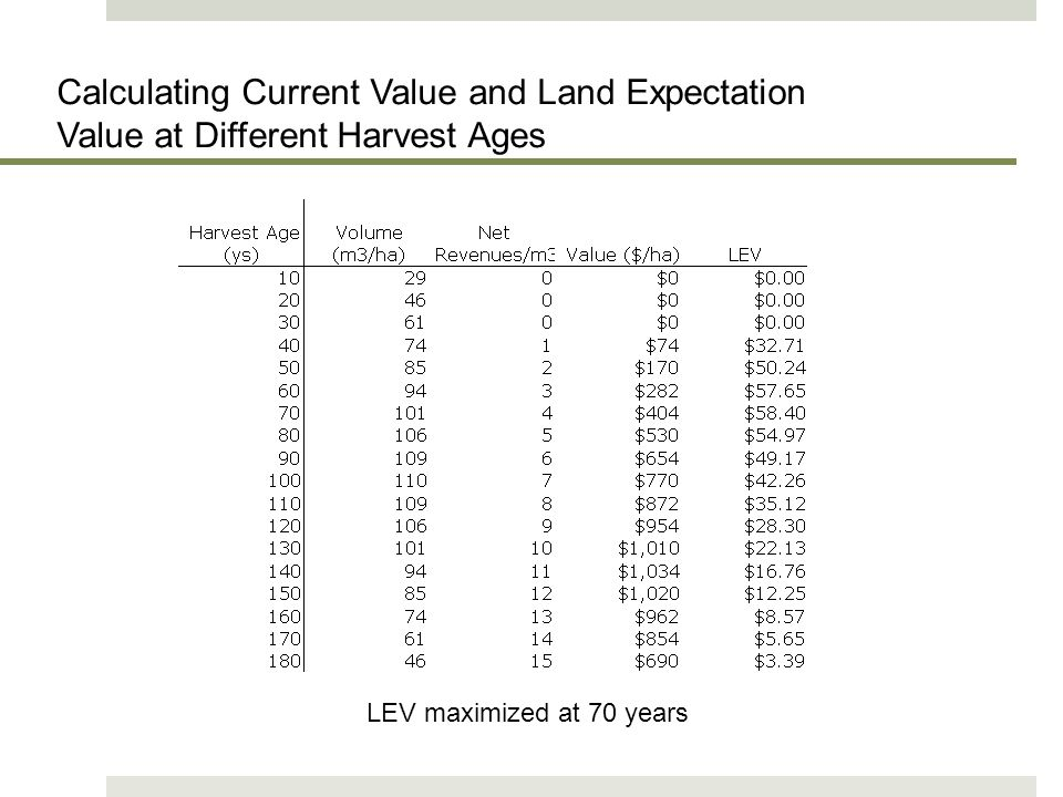 Harry Nelson 2011 Calculating Current Value and Land Expectation Value at Different Harvest Ages.