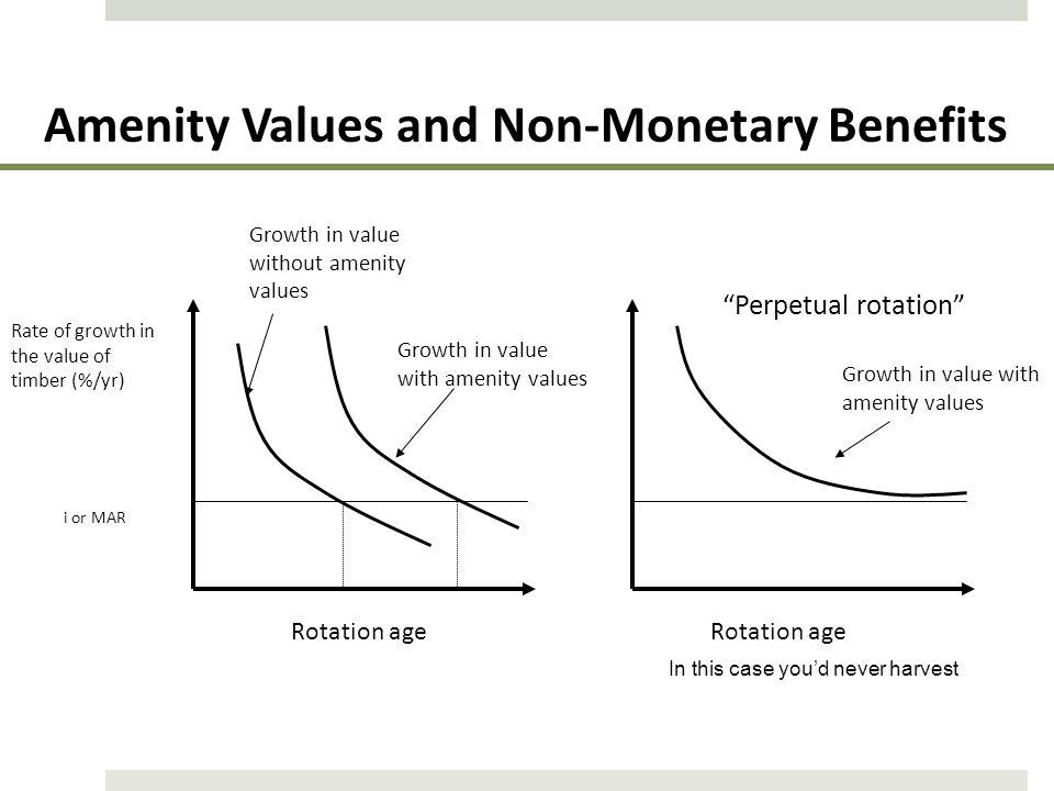 Amenity Values and Non-Monetary Benefits