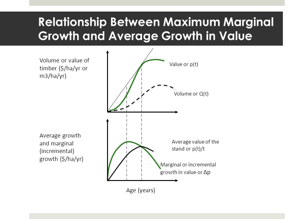 Relationship Between Maximum Marginal Growth and Average Growth in Value