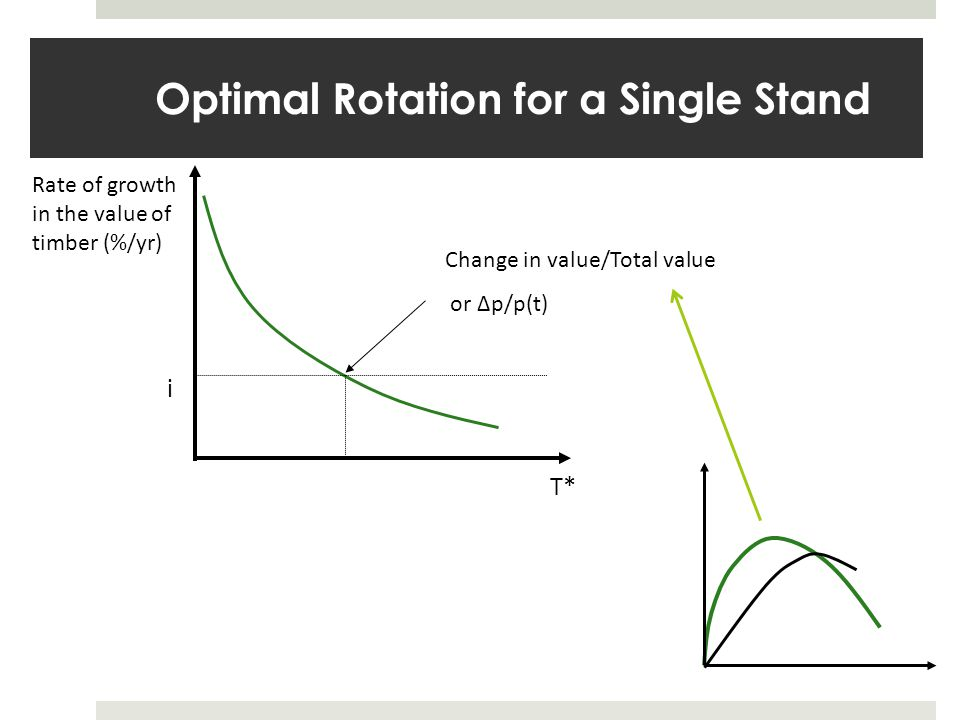 Optimal Rotation for a Single Stand